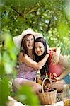 Women picnicking together in park Stock Photo - Premium Royalty-Free, Artist: Cultura RM, Code: 614-06623584