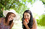 Women picnicking together in park Stock Photo - Premium Royalty-Free, Artist: photo division, Code: 614-06623586