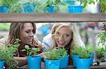 Woman shopping for plants in nursery Stock Photo - Premium Royalty-Free, Artist: Uwe Umsttter, Code: 614-06623721