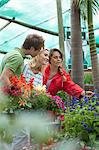Friends shopping for plants in nursery Stock Photo - Premium Royalty-Free, Artist: Blend Images, Code: 614-06623736