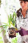 Woman examining plant roots outdoors Stock Photo - Premium Royalty-Free, Artist: Aflo Relax, Code: 614-06624063