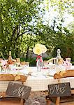 Table setting for outdoor wedding reception Stock Photo - Premium Royalty-Freenull, Code: 6113-06625657