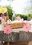 Table set for wedding reception outdoors Stock Photo - Premium Royalty-Free, Artist: Ikonica, Code: 6113-06625679