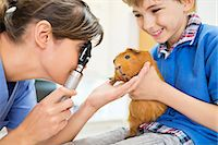 Boy holding guinea pig in vet examination Stock Photo - Premium Royalty-Freenull, Code: 6113-06626497