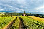 Summer evening mountain village outskirts with country road in front and Tatra range behind (Gliczarow Gorny, Poland) Stock Photo - Royalty-Free, Artist: Yuriy                         , Code: 400-06633566