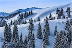 winter landscape in the Carpathian Mountains. Ciucas Mountains, Romania Stock Photo - Royalty-Free, Artist: porojnicu                     , Code: 400-06639781