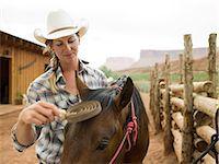 Woman brushing horse Stock Photo - Premium Royalty-Freenull, Code: 6114-06649839