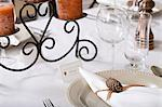 Decorated table Stock Photo - Premium Royalty-Free, Artist: Susan Findlay, Code: 6114-06658124