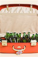 Beer bottles in a suitcase Stock Photo - Premium Royalty-Freenull, Code: 6114-06660131