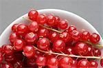 Redcurrants Stock Photo - Premium Royalty-Free, Artist: Cultura RM, Code: 6114-06660282