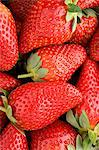 Strawberries Stock Photo - Premium Royalty-Free, Artist: Blend Images, Code: 6114-06660287