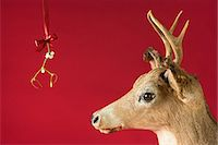 A reindeer underneath mistletoe Stock Photo - Premium Royalty-Freenull, Code: 6114-06662972