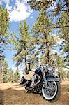 Motorcycle with riding gloves and jacket in forest setting Stock Photo - Premium Royalty-Free, Artist: Cultura RM, Code: 693-06667828