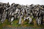 Close-up view of stone wall, Ireland Stock Photo - Premium Royalty-Free, Artist: Beyond Fotomedia, Code: 693-06667858