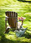Wooden Adirondack Chair with Peaches on the Arm; Two Metal Watering Cans Stock Photo - Premium Royalty-Free, Artist: Minden Pictures, Code: 659-06671018