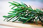 Rosemary Sprigs; Close Up Stock Photo - Premium Royalty-Free, Artist: photo division, Code: 659-06671178