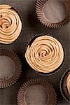 Chocolate cupcakes with coffee icing Stock Photo - Premium Royalty-Freenull, Code: 659-06671266