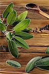 Sage leaves on a rustic wooden panel Stock Photo - Premium Royalty-Free, Artist: photo division, Code: 659-06671279