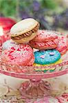 Macaroons filled with buttercream on a cake stand Stock Photo - Premium Royalty-Free, Artist: foodanddrinkphotos, Code: 659-06671401