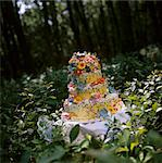 Forest Wedding Cake Stock Photo - Premium Royalty-Free, Artist: Westend61, Code: 659-06671429