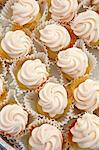 Mini Vanilla Frosted Cupcakes in Paper Liners Stock Photo - Premium Royalty-Freenull, Code: 659-06671609