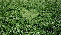Heart-shaped grass, computer artwork. Stock Photo - Premium Royalty-Freenull, Code: 679-06673923