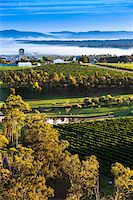 road landscape - Aerial view of wine country near Pokolbin, Hunter Valley, New South Wales, Australia Stock Photo - Premium Rights-Managednull, Code: 700-06675096