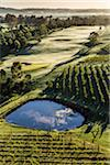 Aerial view of a golf course and vineyards in wine country near Pokolbin, Hunter Valley, New South Wales, Australia Stock Photo - Premium Rights-Managed, Artist: R. Ian Lloyd, Code: 700-06675098