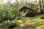 South America, Brazil, Paraty, Costa Verde, Green Coast,, a cabana room at the Bromelias pousada and spa set, in the Atlantic Coastal rainforest in Grauna near Paraty Stock Photo - Premium Rights-Managed, Artist: AWL Images, Code: 862-06675782
