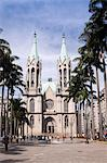 South America, Brazil, Sao Paulo, Sao Paulo Metropolitan Cathedral set in the palm tree shaded Cathdral Square Stock Photo - Premium Rights-Managed, Artist: AWL Images, Code: 862-06676060