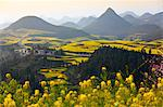 China, Yunnan, Luoping. A small settlement surrounded by peach trees and mustard plants in blossom amongst the karst outcrops of Luoping. Stock Photo - Premium Rights-Managed, Artist: AWL Images, Code: 862-06676210