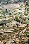 China, Yunnan, Yuanyang. Pattern of rice terraces at Tiger's Mouth, Laohuzi, Yuanyang. Stock Photo - Premium Rights-Managed, Artist: AWL Images, Code: 862-06676291