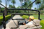 India, Rajasthan, Ajabgarh. A tour vehicle drives through the grounds of Amanbagh, a luxury hotel. Stock Photo - Premium Rights-Managed, Artist: AWL Images, Code: 862-06676831