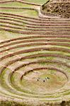 South America, Peru, Cusco, Sacred Valley, Maras. General view of Moray   verdant pre Hispanic terraces made by the Incas and probably used for agricultural experiments Stock Photo - Premium Rights-Managed, Artist: AWL Images, Code: 862-06677359