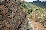 South America, Peru, Cusco, Nusta Hispana. Terraces, a hiker walks next to a long Inca wall and causeway at Choquequirao, built by Tupac Inca Yupanqui and Huayna Capac and situated above the Apurimac valley in the mountains of the Salkantay range Stock Photo - Premium Rights-Managed, Artist: AWL Images, Code: 862-06677416