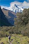 South America, Peru, Ancash, Cordillera Blanca. hiker with backpack walking on the Santa Cruz trek in Huascaran National Park, with the Quebrada Santacruz and the Taulliraju snowfields in the background Stock Photo - Premium Rights-Managed, Artist: AWL Images, Code: 862-06677428