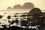 Beach at Cape Alava, Olympic National Park, Clallam County, Washington, USA Stock Photo - Premium Rights-Managed, Artist: AWL Images, Code: 862-06677633