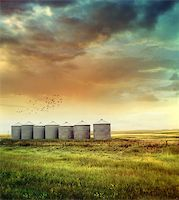 Prairie grain silos in late summer Stock Photo - Royalty-Freenull, Code: 400-06695277