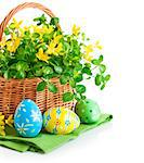 easter egg in basket with spring flower isolated on white background Stock Photo - Royalty-Free, Artist: yasonya                       , Code: 400-06698856