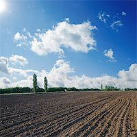 plow - black plowed field under blue sky with sun Stock Photo - Royalty-Freenull, Code: 400-06701094