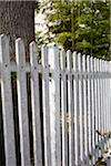 Close-up of wooden fence, Arcachon, Gironde, Aquitaine, France Stock Photo - Premium Rights-Managed, Artist: photo division, Code: 700-06701767