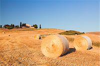 Round Hay Bales in Field with Farm Building in the Distance, Val d'Orcia, Tuscany, Italy Stock Photo - Premium Royalty-Freenull, Code: 600-06702056