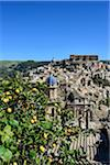Italy, Sicily, Ragusa Ibla, view of the baroque town and a lemon tree Stock Photo - Premium Rights-Managed, Artist: Siephoto, Code: 700-06714164