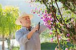 Older man gardening outdoors Stock Photo - Premium Royalty-Free, Artist: Blend Images, Code: 649-06716690