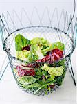 Wire bowl of mixed salad Stock Photo - Premium Royalty-Free, Artist: Cultura RM, Code: 649-06716774
