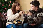 Couple toasting each other on sofa Stock Photo - Premium Royalty-Free, Artist: Blend Images, Code: 649-06716876
