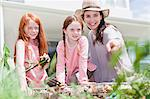 Mother and daughters gardening Stock Photo - Premium Royalty-Free, Artist: Blend Images, Code: 649-06716999