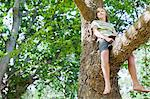 Smiling boy sitting in tree Stock Photo - Premium Royalty-Free, Artist: Blend Images, Code: 649-06717299