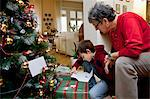 Woman and grandson with Christmas presents Stock Photo - Premium Royalty-Free, Artist: Blend Images, Code: 649-06717347