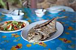 Plates of fish and vegetables on table Stock Photo - Premium Royalty-Free, Artist: Robert Harding Images, Code: 649-06717851